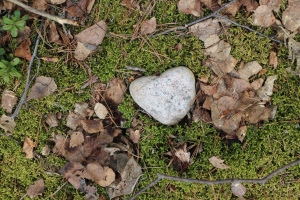The first time I came to the cabin, I found this heart in stone, lying on a blanket of moss, near the lake. It's still there and has become some sort of totem for me.